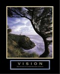 Vision See the Poster See it Framed