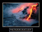 Determination See the Poster See it Framed